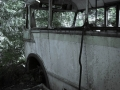 vergane-bus-2