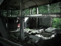 vergane-bus1